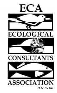 Shorebird Workshop Draft Flyer logo